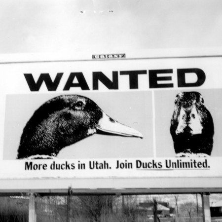 Ducks Unlimited road sign in Weber County