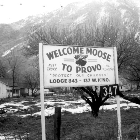 Welcome Moose to Provo road sign in Utah County